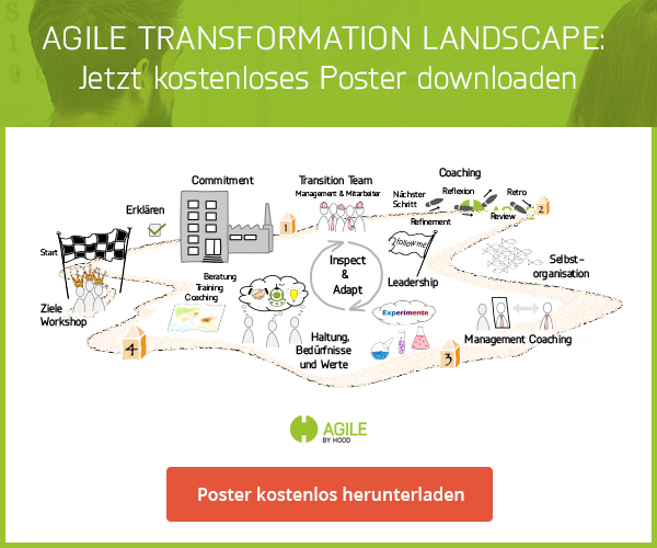 Landscape Agile Transformation